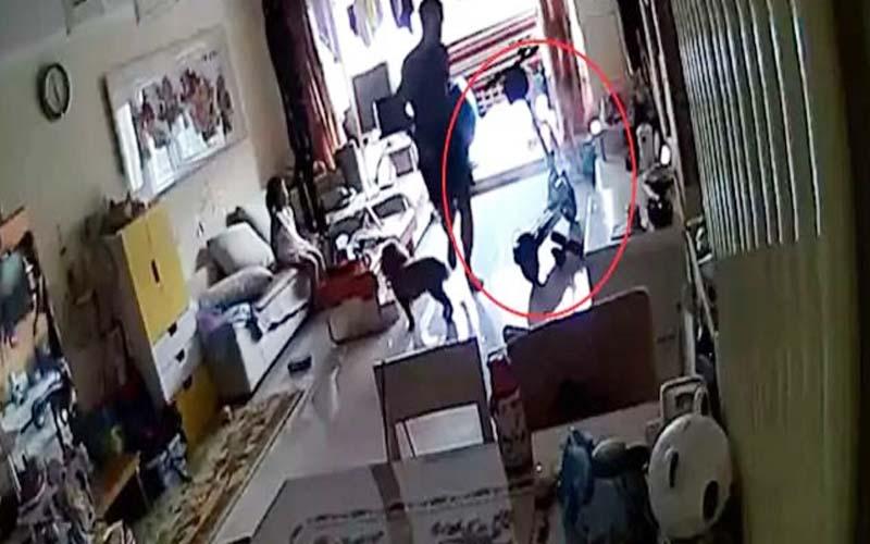 घर में खेल रहे थे बच्चे और अचानक उड़ गए इलेक्ट्रिक स्कूटर के परखच्चे, कैमरे में कैद हुआ हादसा
