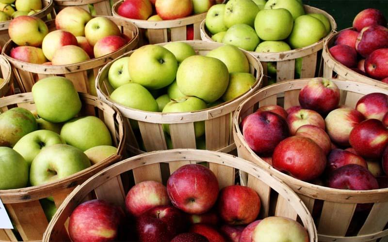 हुआ बड़ा खुलासा, इसलिए रोज एक सेब खाने से डॉक्टर रहता है दूर