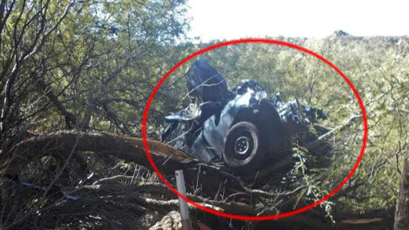 पेड़ पर झूलती रही कार, , 6 दिन बाद उड़ गए सभी के होश