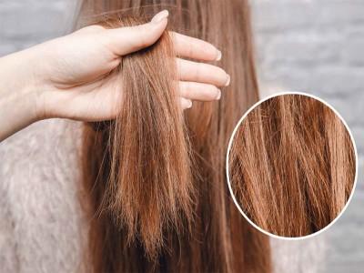 रूखे और बेजान दिखने वाले बालों का इन 5 तरीकों से सुधारे टेक्सचर