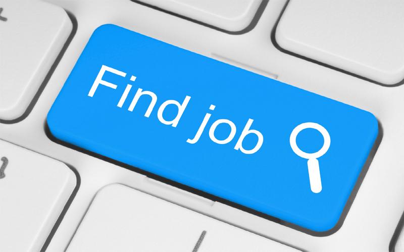 बेरोजगारों के लिए बड़ी खुशखबरी निकली 8वीं, 10वीं और ग्रेजुएट के लिए बंपर भर्ती