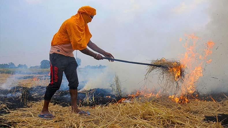 प्रदूषण फैलाने वाली पराली से किसानों को मात्र 20 रुपये में मिलेगी निजात