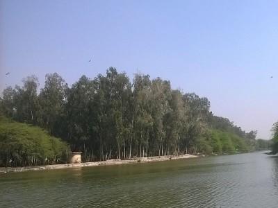 संजय झील में फिसल कर गिरने से किशोर की मौत