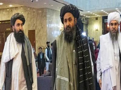 PhD या मास्टर डिग्री बेकार, हम इनके बिना ही इस मुकाम तक पहुंचे- तालिबान सरकार के शिक्षा मंत्री